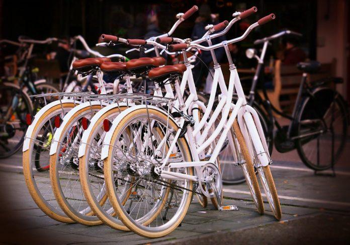Opolska firma płaci pracownikom za jazdę na rowerze