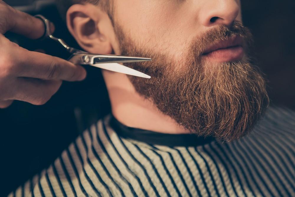 Prezent dla brodacza